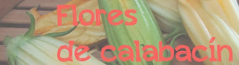 Cabecera-flores de calabacín