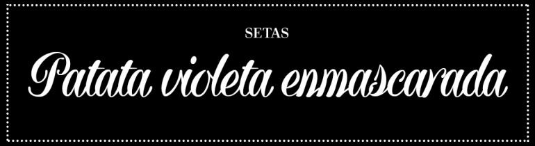 cabecera_patata-enmascarada
